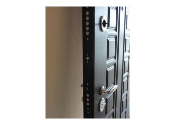 стальная наружная дверь раменский район